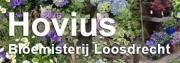 Logo-Hovius
